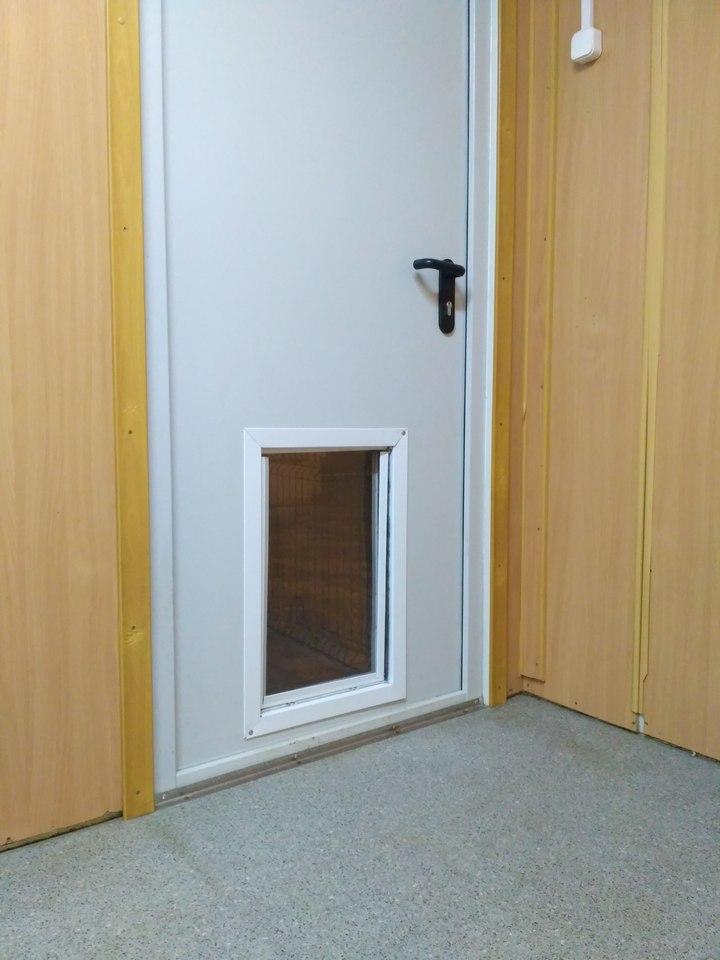 Дверь для собаки